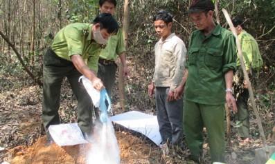 Vườn quốc gia Bạch Mã: Tiêu hủy 30 kg thịt heo rừng, phạt 2.000.000 đồng đối với các đối tượng vi phạm
