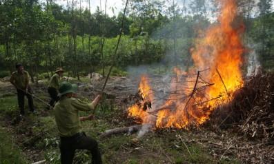 Vườn quốc gia Bạch Mã tham gia diễn tập chữa cháy rừng   và tìm kiếm cứu nạn do UBND huyện Phú Lộc tổ chức