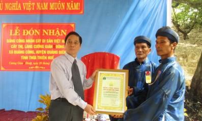 Lễ đón nhận Bằng công nhận Cây Thị của làng Cương Gián Đông, xã Quảng Công, huyện Quảng Điền, tỉnh Thừa Thiên Huế là Cây Di sản Việt Nam