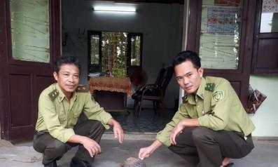 Vườn quốc gia Bạch Mã tái thả động vật hoang dã về với môi trường tự nhiên